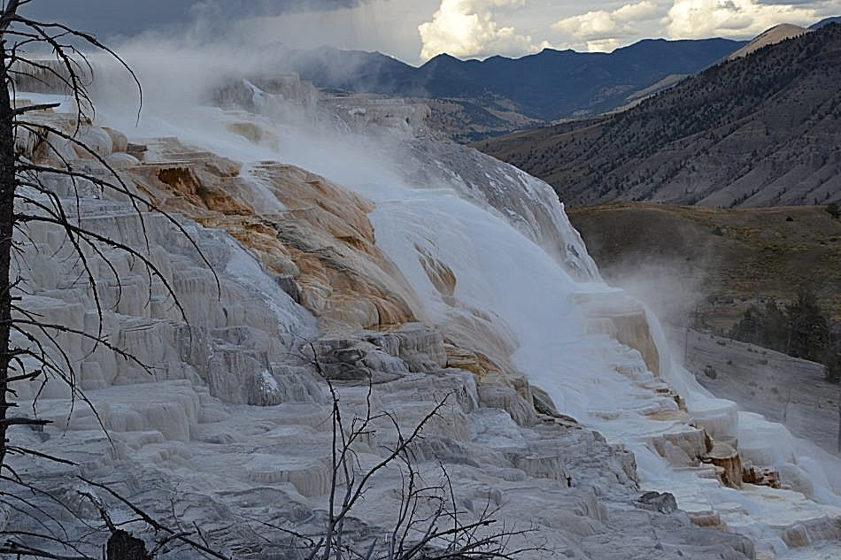 Mammoth Springs- Upper Terraces