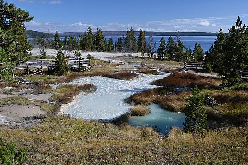 West Thumb Geyser — Bid 1